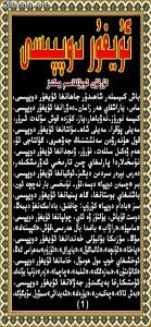 uyghur doppisi
